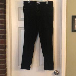 Loft Modern Skinny Velvet Jeans